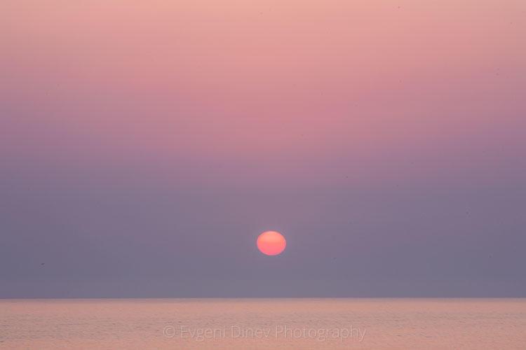 maslen_nos-sunrise
