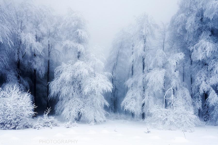 snow_trap