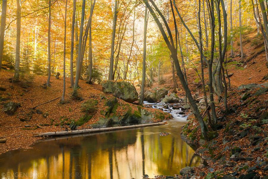 fall_stara-planina