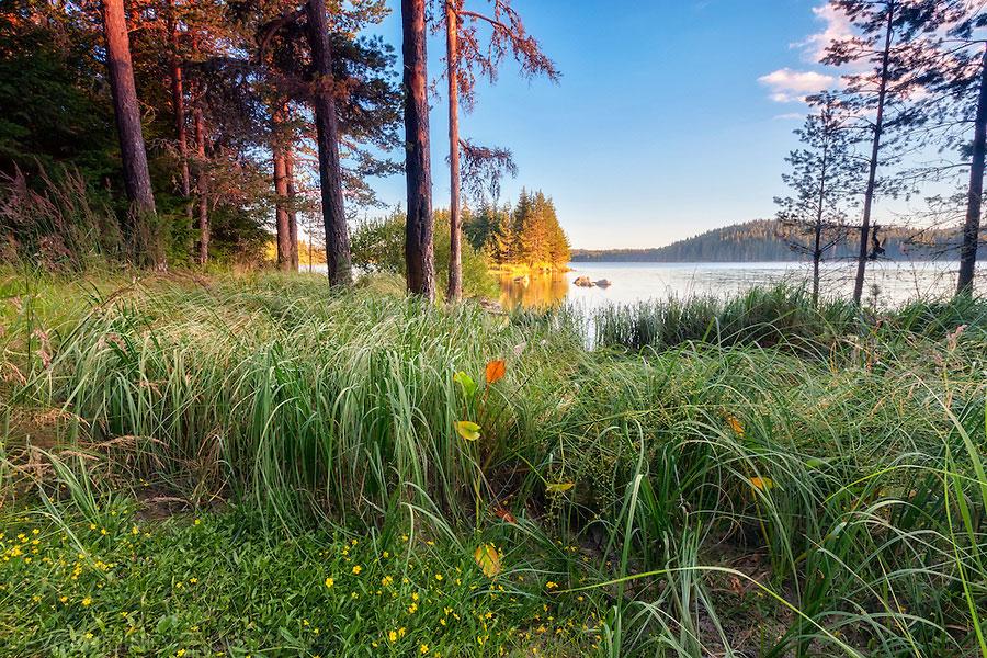 sunny-lake