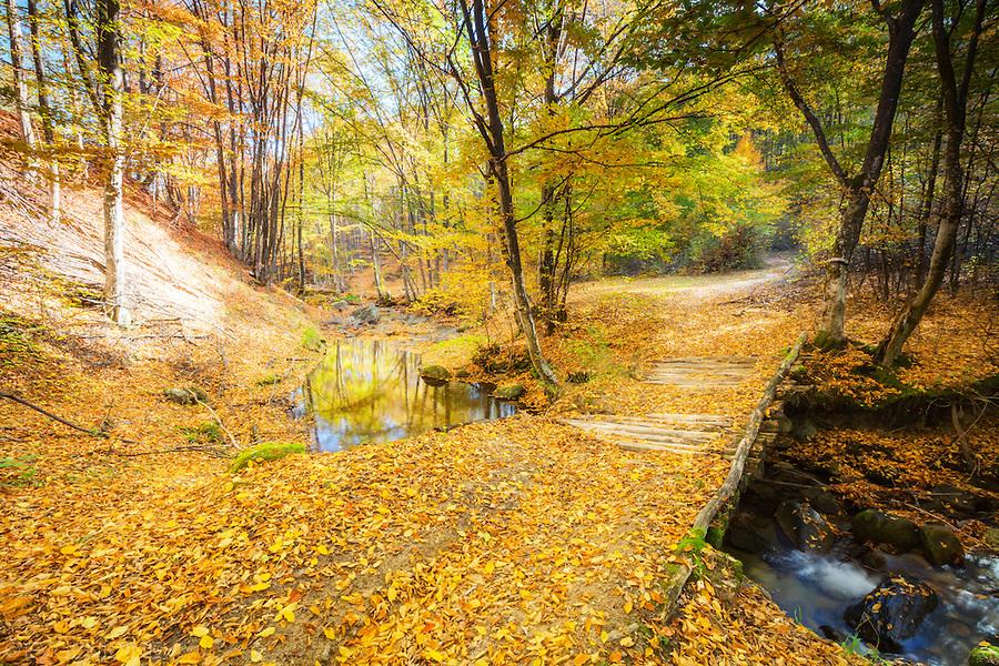 sredna-gora-fall